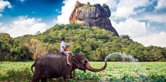 Travel Sri Lanka - The best place to visit while on vacation in Sri Lanka!